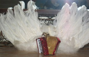 Wings with Accordion Accordions Rising documentary film